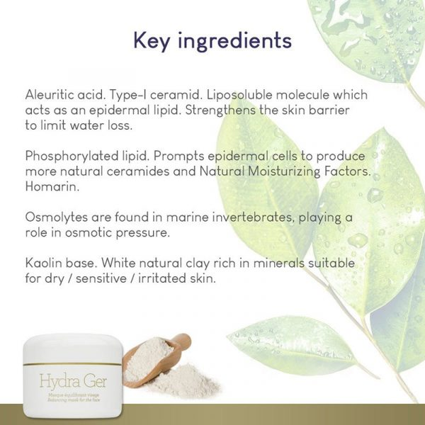 GERnétic Hydra Ger - key ingredients