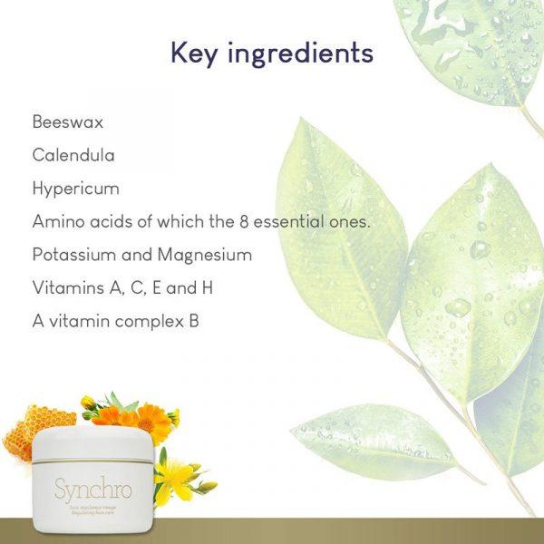 GERnétic Synchro - key ingredients